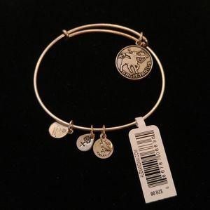 Alex & Ani Sagittarius Zodiac Charm Bracelet